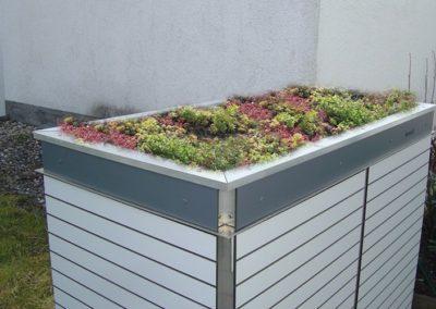 Mülltonnenbox Trash Pflanzdach