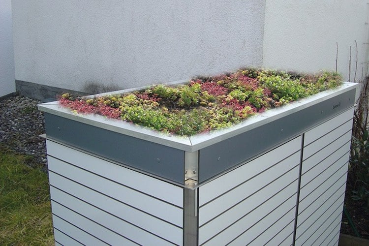 Mülltonnenbox Trash Planzdach